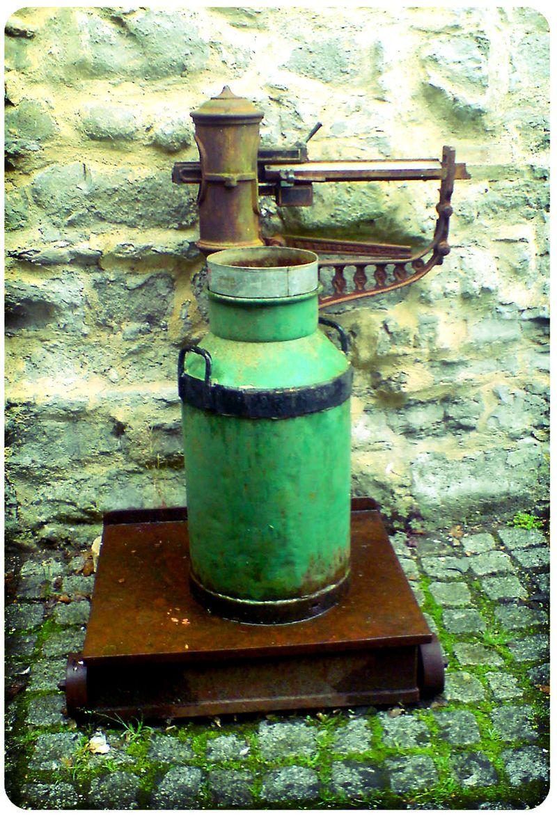 Lyme pump lomo