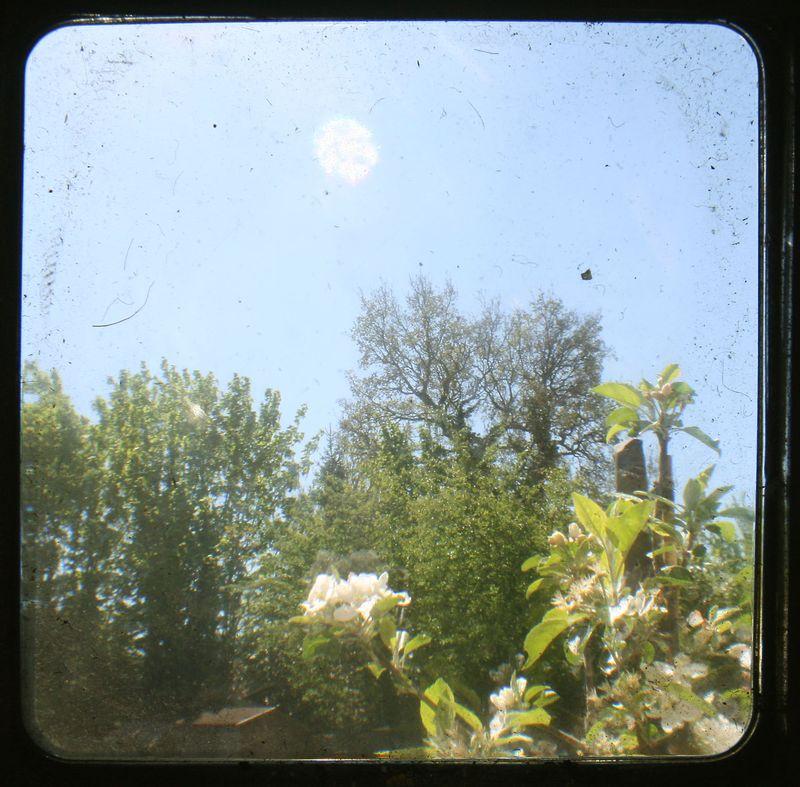 TTV garden 3